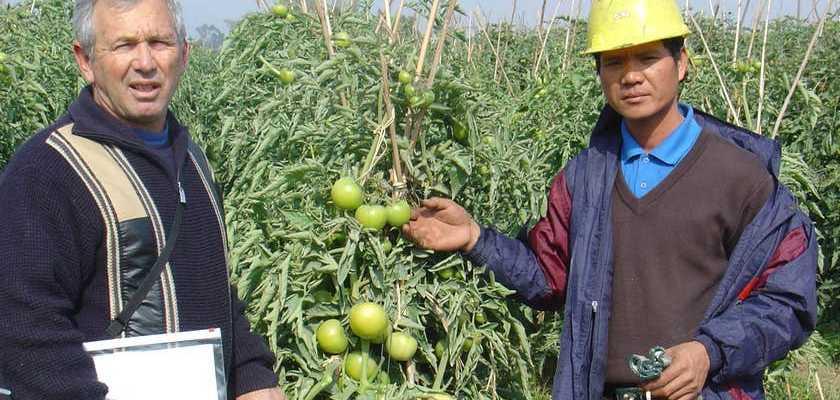 Ảnh tư liệu: Kỹ sư và nông dân Israel.
